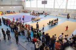 17 и 18 декабря прошли открытый чемпионат и первенство Новосибирской области, Чемпионат и Первенство города, а также турнир в рамках Первенства города «Надежда Сибири»