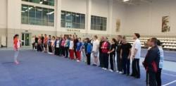 С 17 по 19 октября в Москве проходил всероссийский судейский семинар по изменениям и дополнениям в правилах соревнований по ушу.